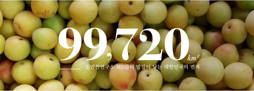 99,720㎢ - 집반찬연구소 MD들의 발길이 닿는 대한민국의 면적